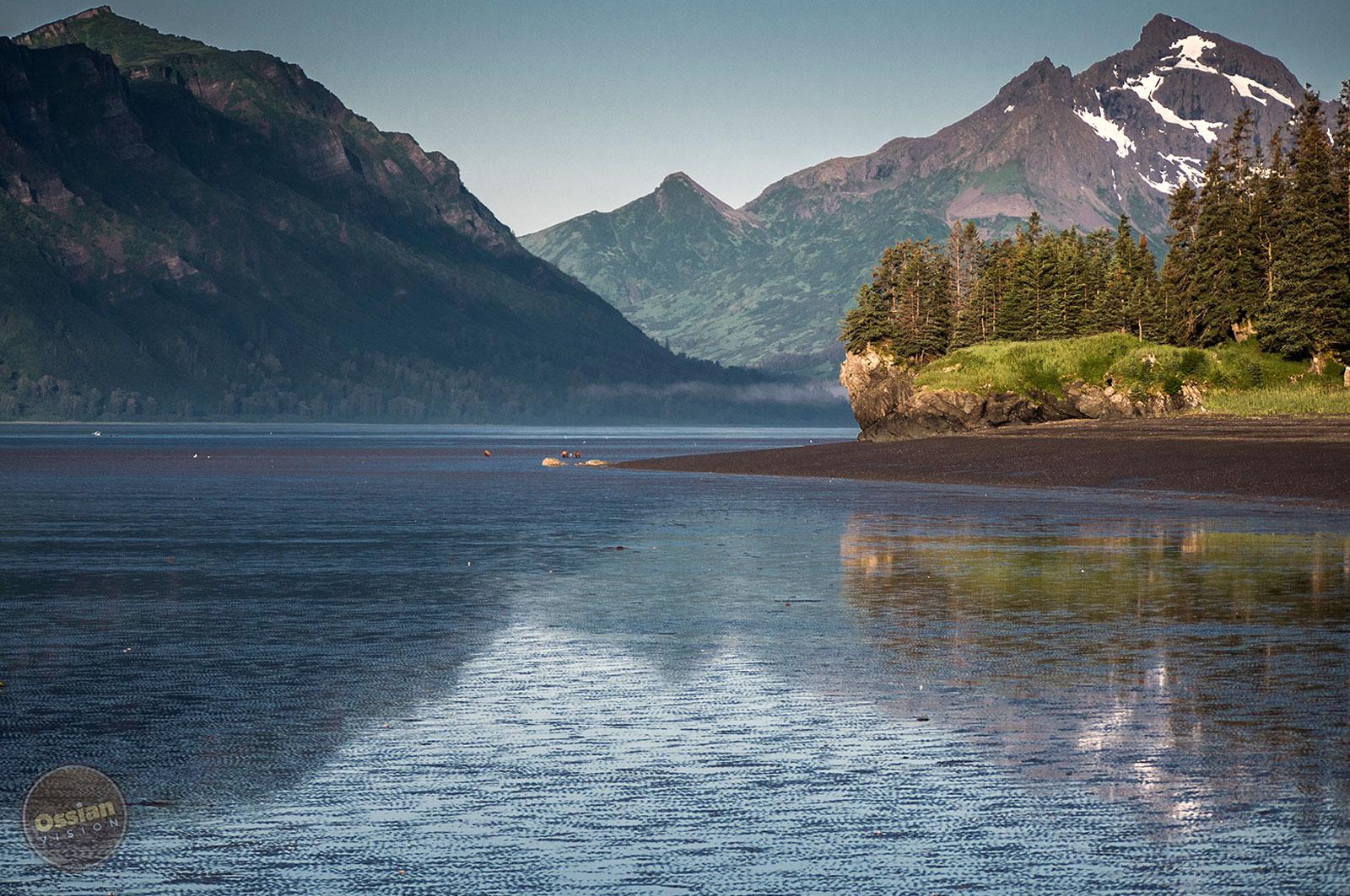 Alaska Bearcamp Chinitna Bay