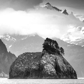 Kenai Fjords Cruise Bnw