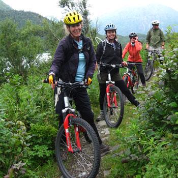 Chugach Mountain Biking National Park Safari