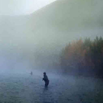 Kenai Flyfishing Fog
