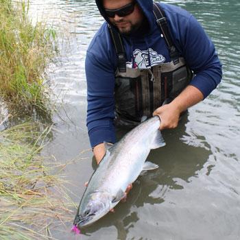 Kenai River Silver Salmon